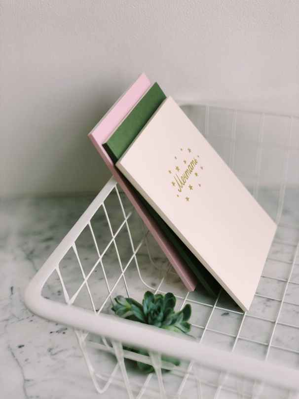 close up photograph of white rack with books and succulent plant